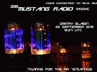 e-QSL Mustang Radio Нидерланды Сентябрь 2015 года Pirate Radio
