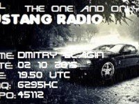 e-QSL Mustang Radio Нидерланды Октябрь 2015 года Pirate Radio
