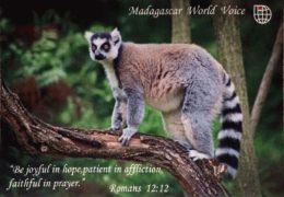 QSL Madagascar World Voice KNLS Мадагаскар Сентябрь 2018  — Февраль 2019 года