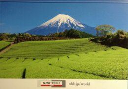 QSL NHK World Japan Радио Японии Январь 2020 года